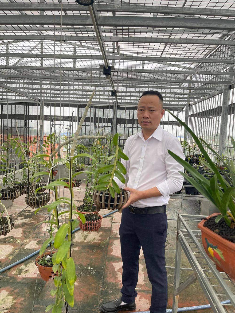 Ông chủ vườn lan Mạnh Quỳnh - Người chơi hoa lan bắt đầu từ sự… thờ ơ Ảnh 2