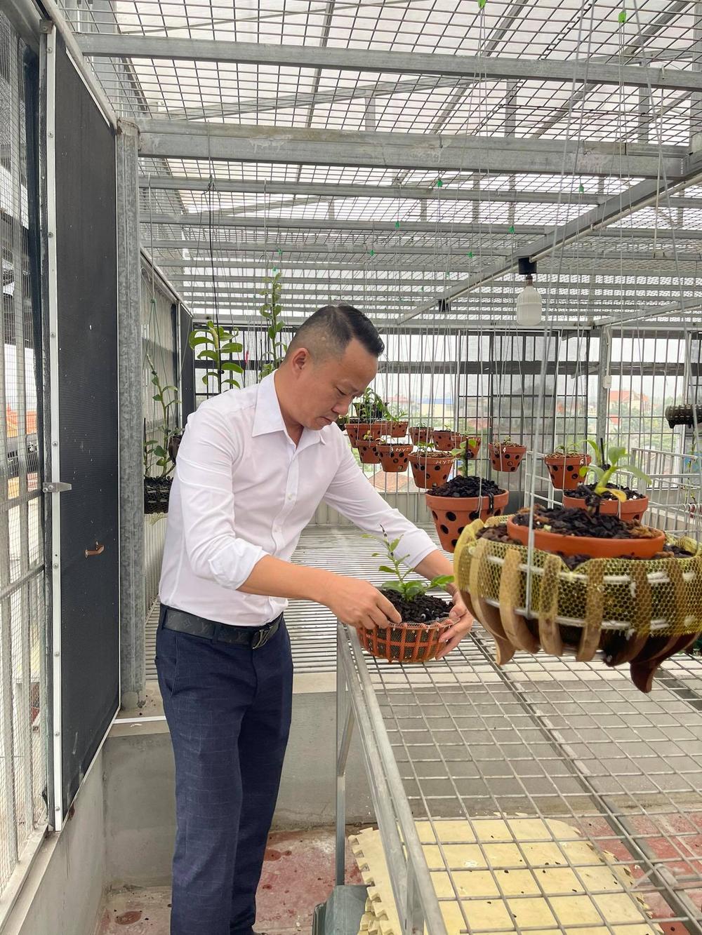 Ông chủ vườn lan Mạnh Quỳnh - Người chơi hoa lan bắt đầu từ sự… thờ ơ Ảnh 3