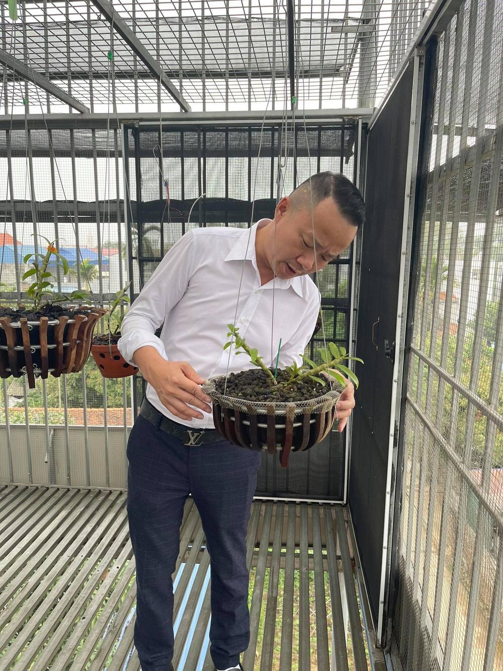 Ông chủ vườn lan Mạnh Quỳnh - Người chơi hoa lan bắt đầu từ sự… thờ ơ Ảnh 7