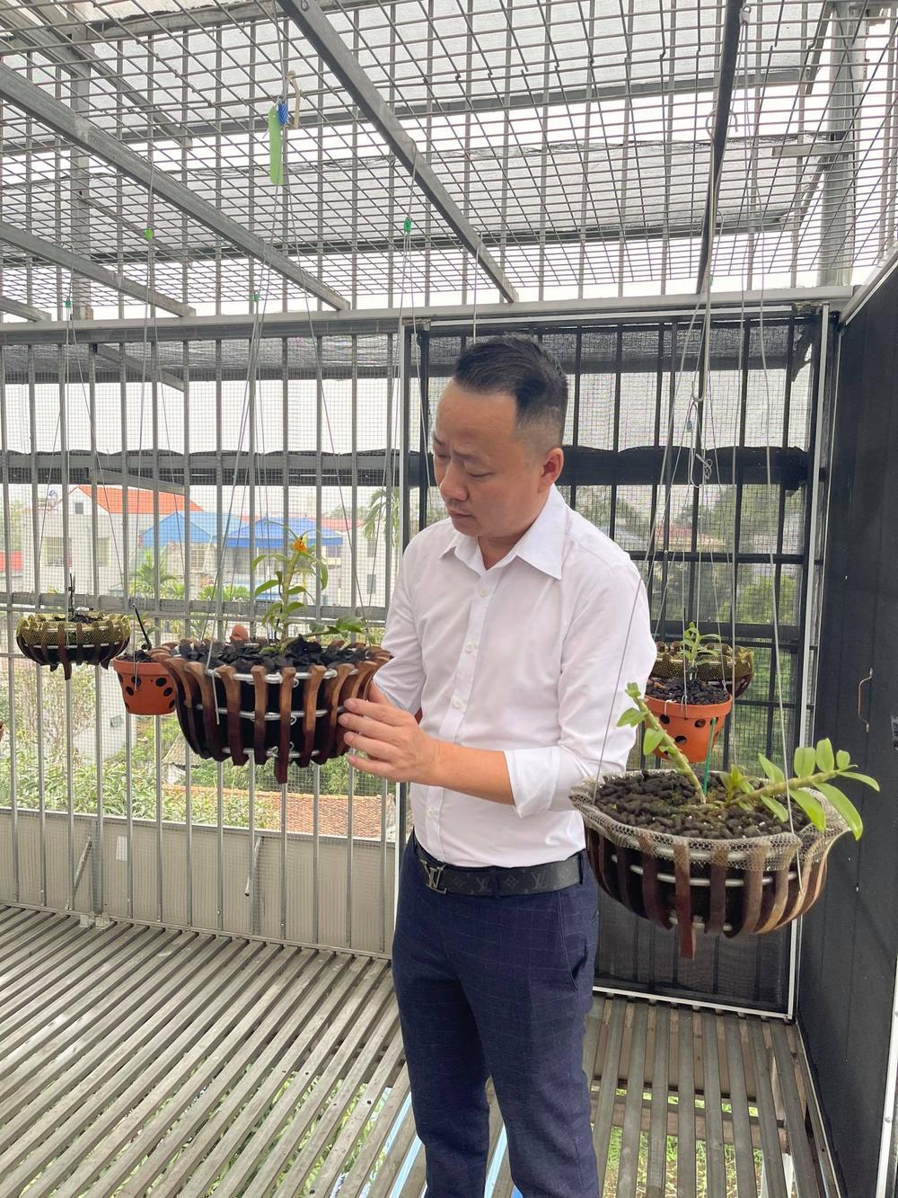 Ông chủ vườn lan Mạnh Quỳnh - Người chơi hoa lan bắt đầu từ sự… thờ ơ Ảnh 6