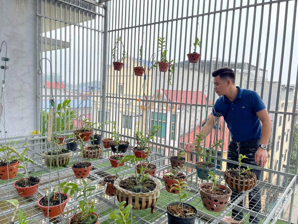 Ông chủ vườn lan 8X Trung Dũng: Chàng trai trồng lan đột biến khó chăm hiếm tìm ở Hà Nam Ảnh 2