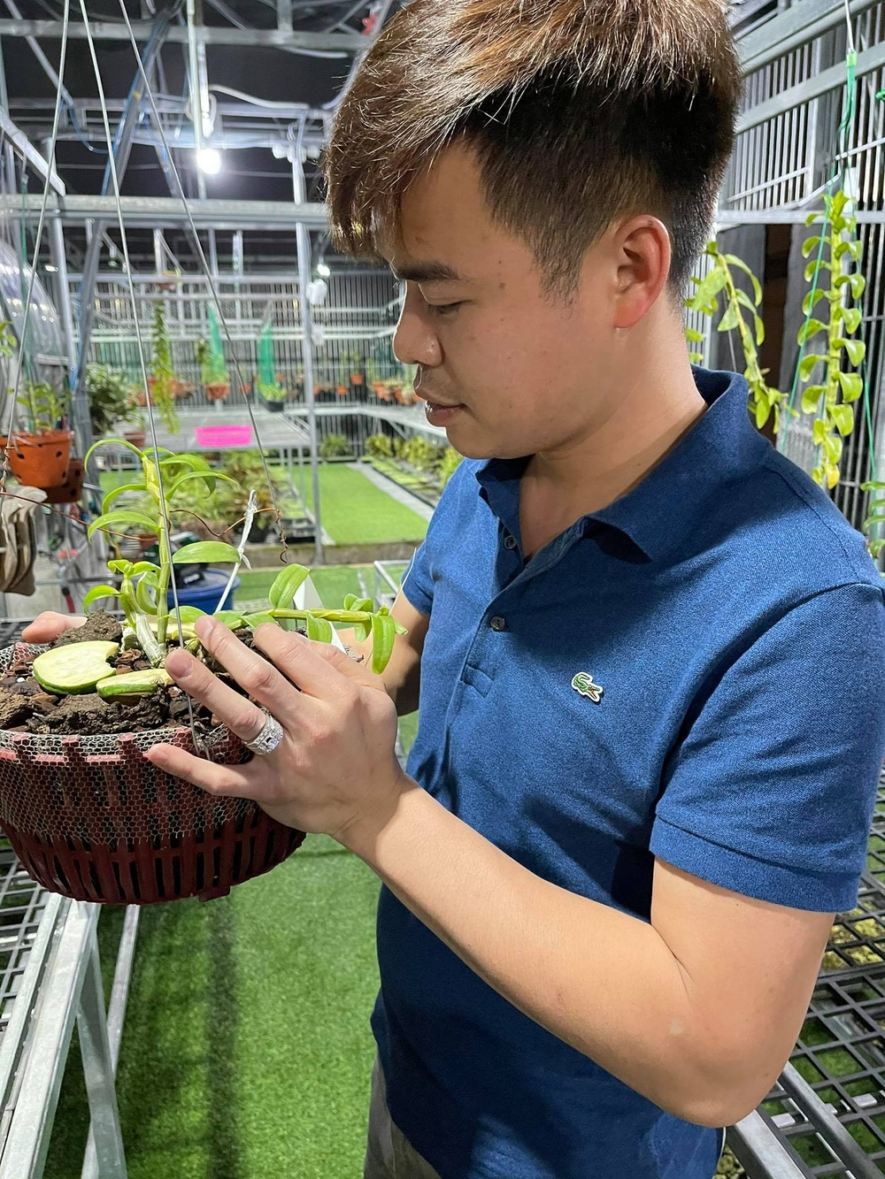 Ông chủ vườn lan 8X Trung Dũng: Chàng trai trồng lan đột biến khó chăm hiếm tìm ở Hà Nam Ảnh 5