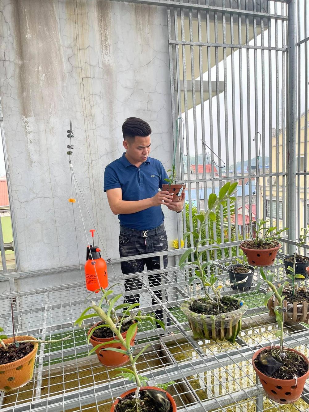Ông chủ vườn lan 8X Trung Dũng: Chàng trai trồng lan đột biến khó chăm hiếm tìm ở Hà Nam Ảnh 3