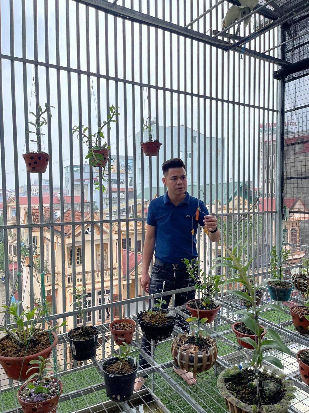 Ông chủ vườn lan 8X Trung Dũng: Chàng trai trồng lan đột biến khó chăm hiếm tìm ở Hà Nam Ảnh 1