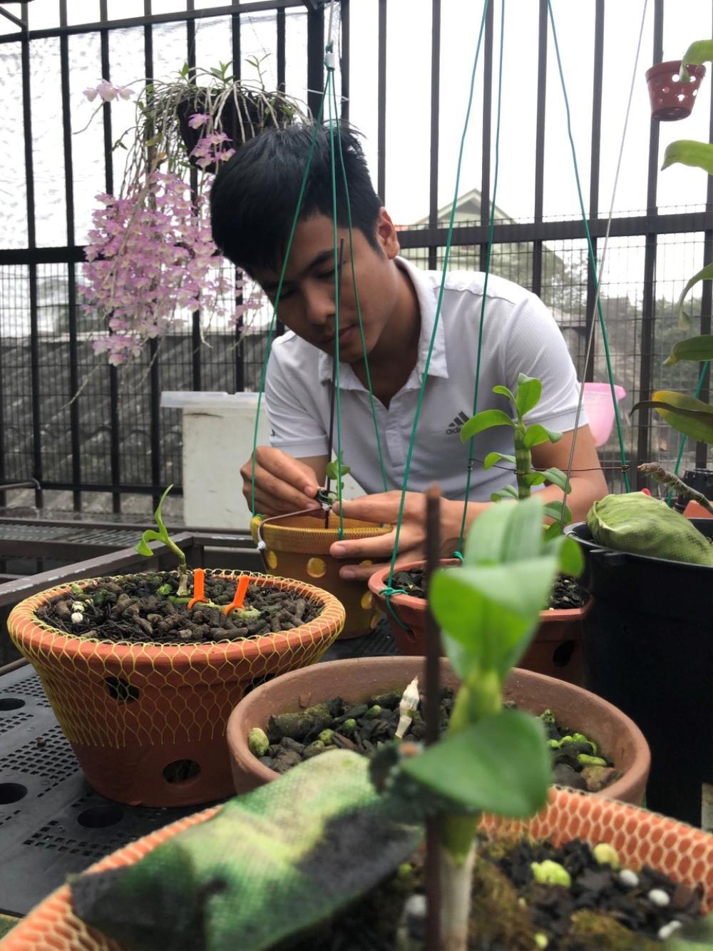 Nghệ nhân trồng lan Tạ Văn Hiệp: Cây lan lớn lên chỉ bằng tình yêu thực sự Ảnh 2