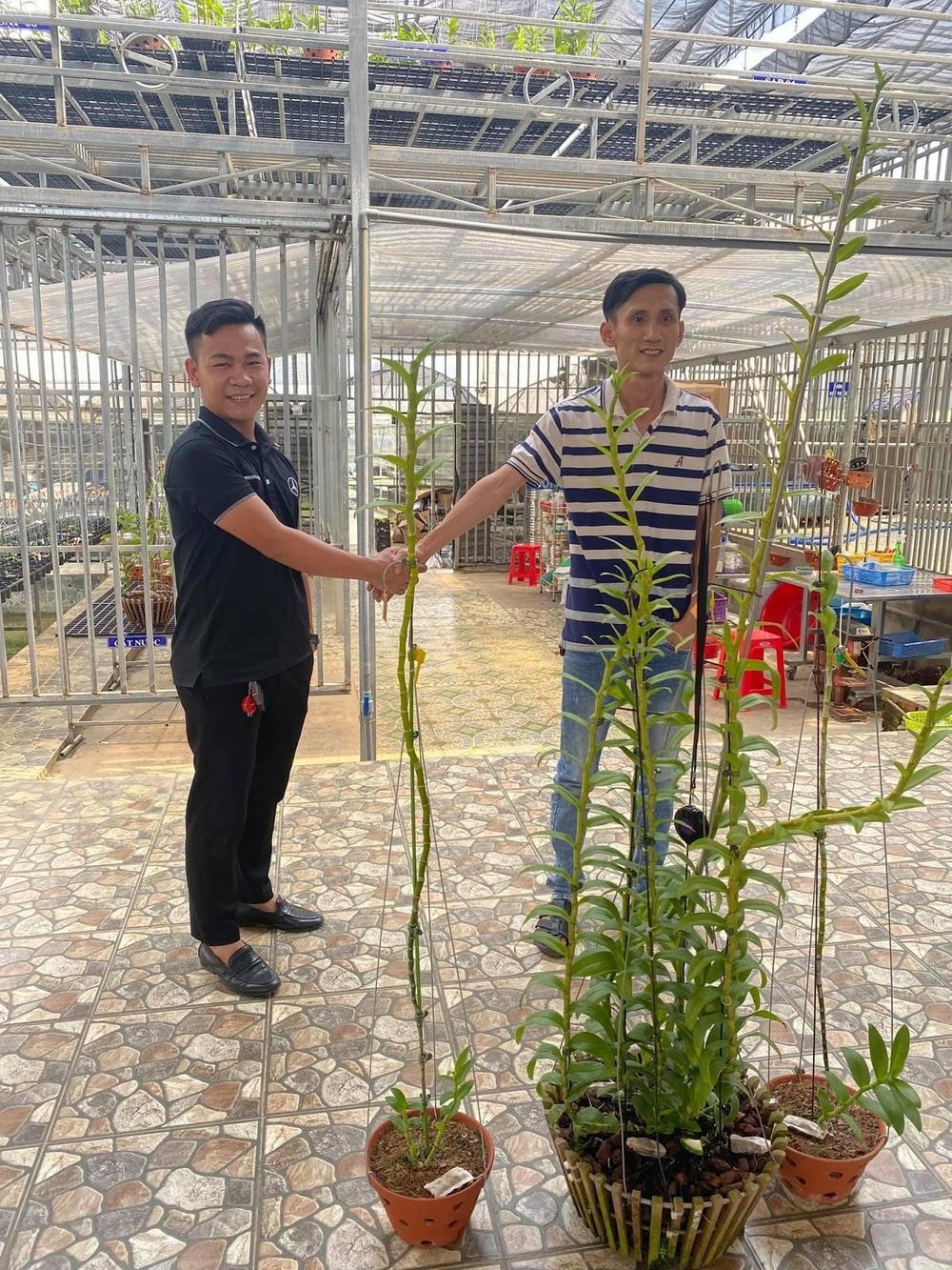 Nghệ nhân hoa lan Trần Quốc Hoà: Hành trình khởi nghiệp thành công đến từ niềm đam mê mãnh liệt với hoa lan Ảnh 3
