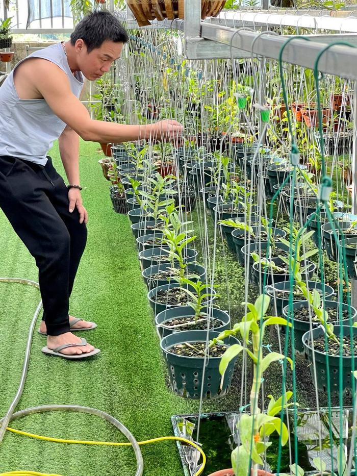 Vũ Đỗ Hoàng Tín chia sẻ quá trình thực hiện đam mê to lớn với hoa lan Ảnh 3
