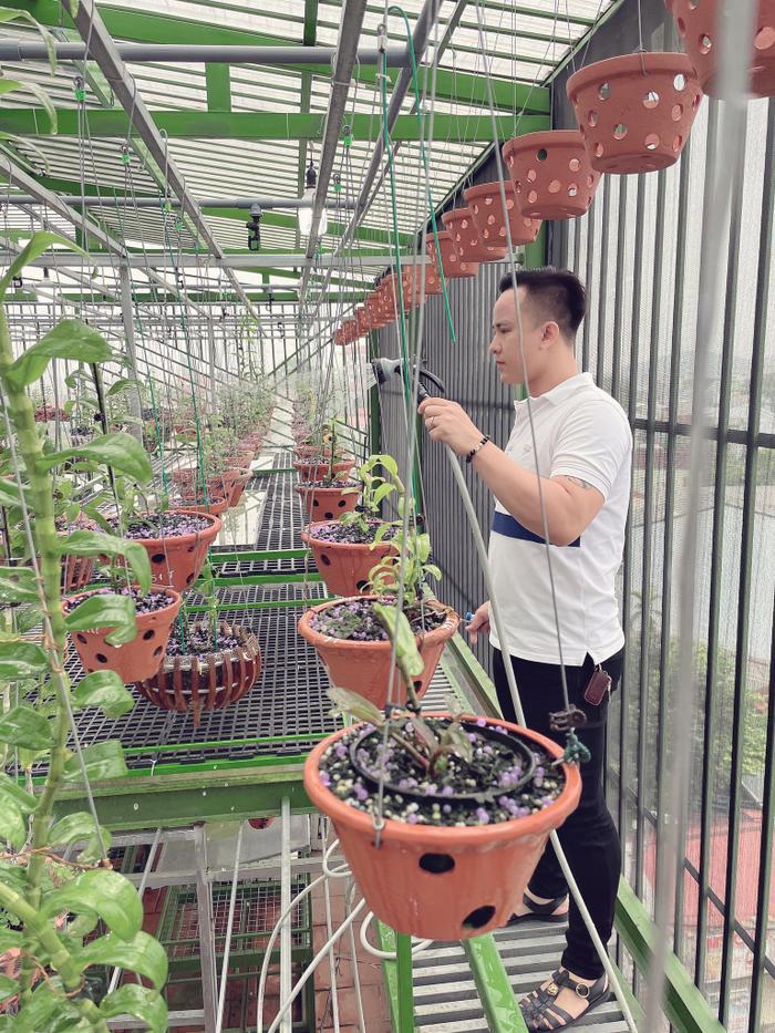 Ông chủ vườn lan 8X Tịnh Thắng: Từ tò mò sưu tầm nhiều giống hoa giá trị Ảnh 7