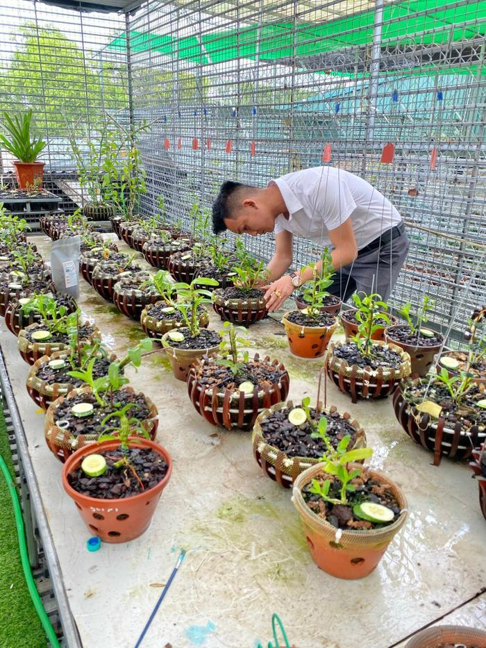 Nghệ nhân Trần Hải Đoàn và hành trình theo đuổi đam mê với hoa lan Ảnh 5
