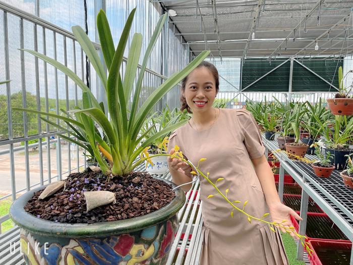 Câu chuyện sở hữu hàng chục loài lan quý của cô chủ Thùy Linh Ảnh 8