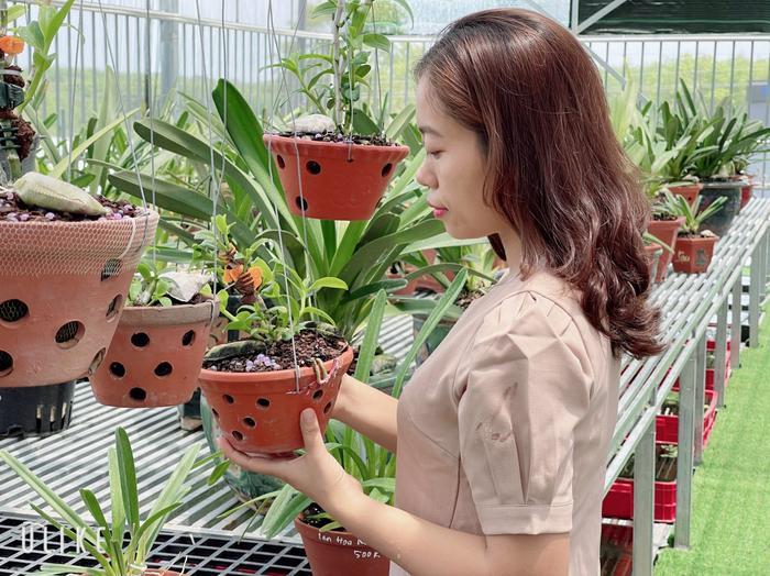 Câu chuyện sở hữu hàng chục loài lan quý của cô chủ Thùy Linh Ảnh 4