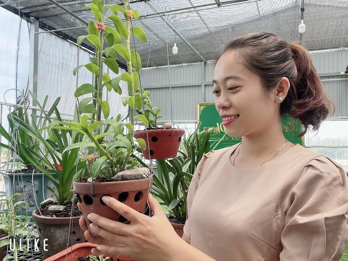 Câu chuyện sở hữu hàng chục loài lan quý của cô chủ Thùy Linh Ảnh 7