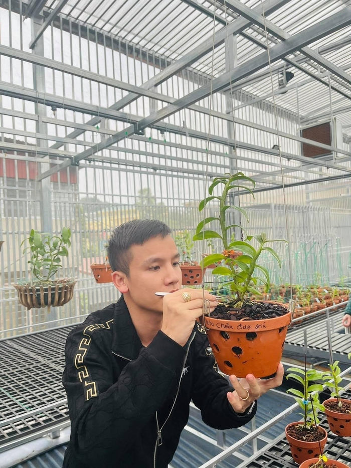 Nghệ nhân Vũ Đức chia sẻ những mẹo cần biết khi chăm sóc hoa lan Ảnh 2