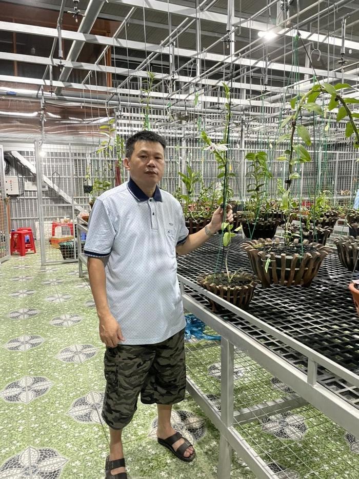 Nghệ nhân Nguyễn Duy Toàn chia sẻ kinh nghiệm chọn giống lan phát triển tốt Ảnh 2