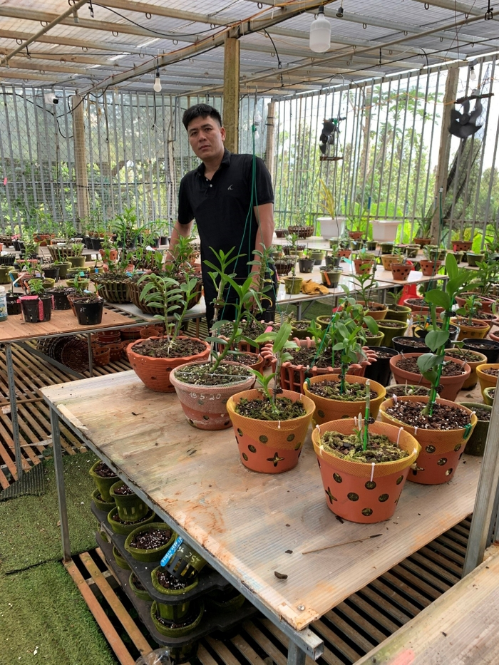 Bí quyết chăm sóc vườn lan của nghệ nhân Nguyễn Thành Chuyên Ảnh 4